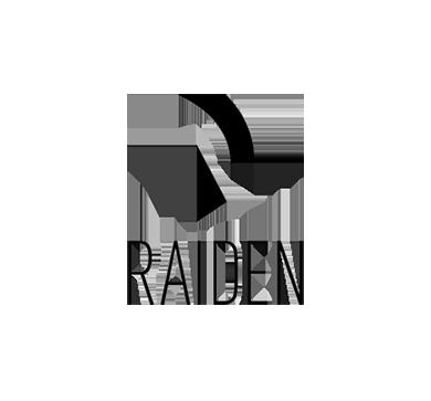 85-Raiden